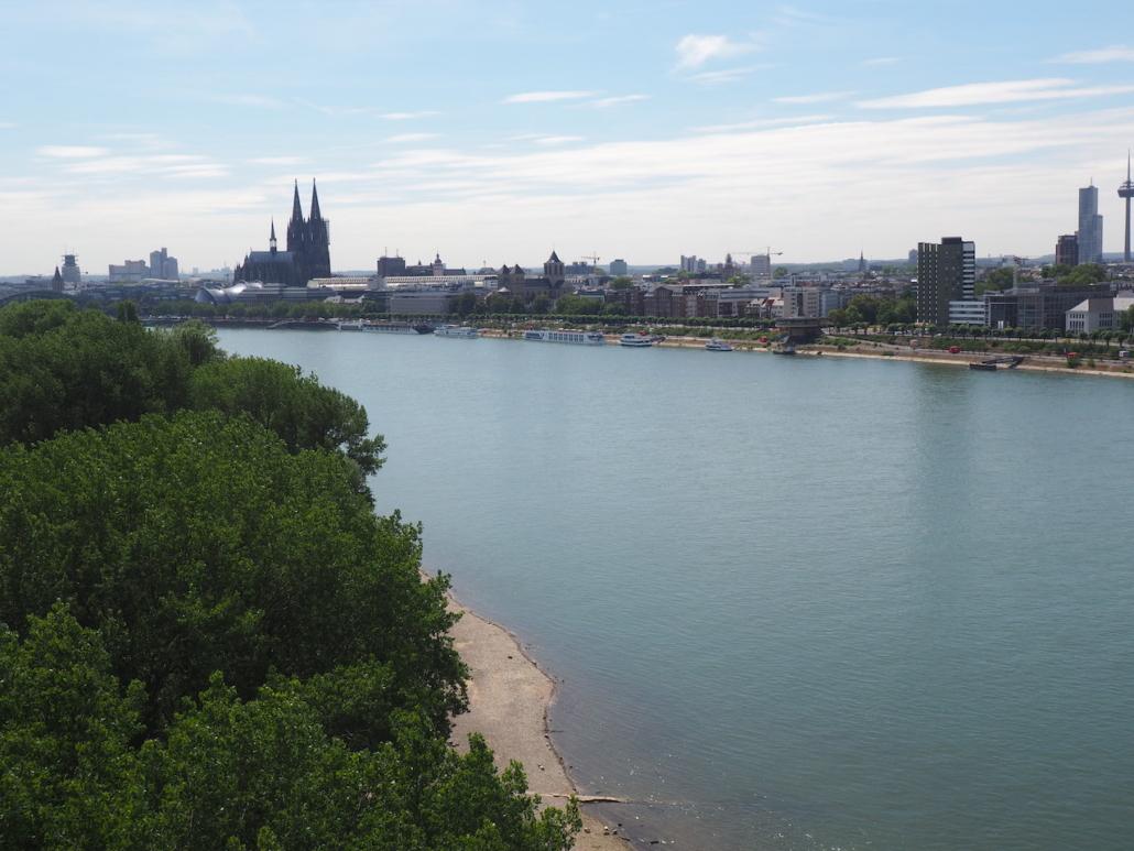 Der Dom und der Rhein